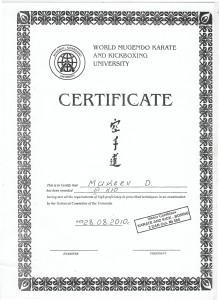 Сертификат о присуждении звания мастера уровня 3 кю в Международном Университете Кикбоксинга и Мугендо